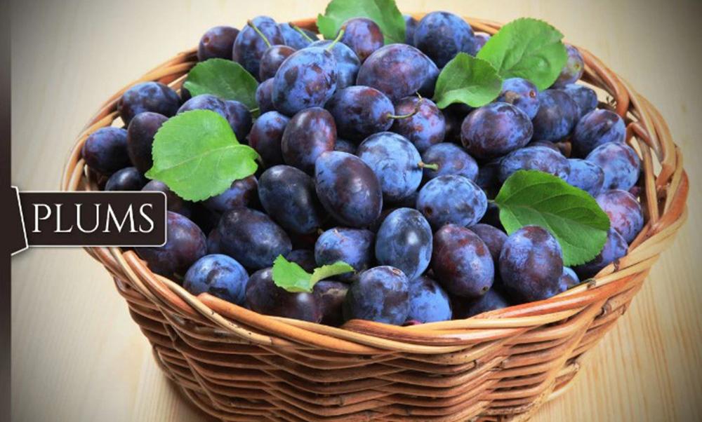 plums-damaskina-1000